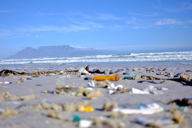 plastic in oceans image